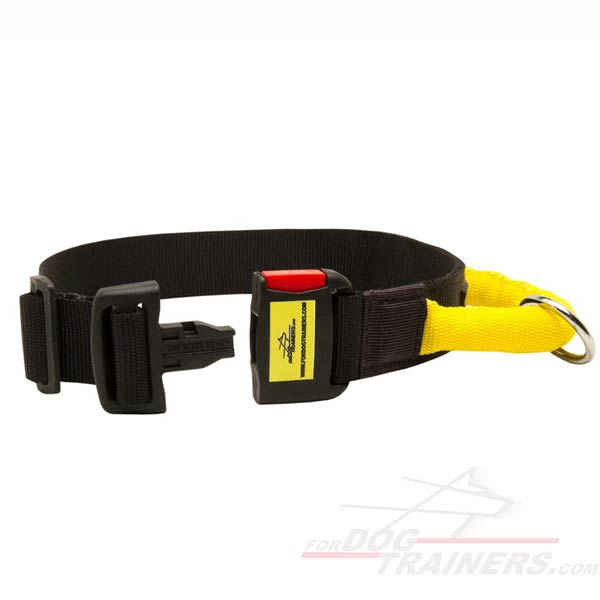Nylon Collar with strong quick release buckle
