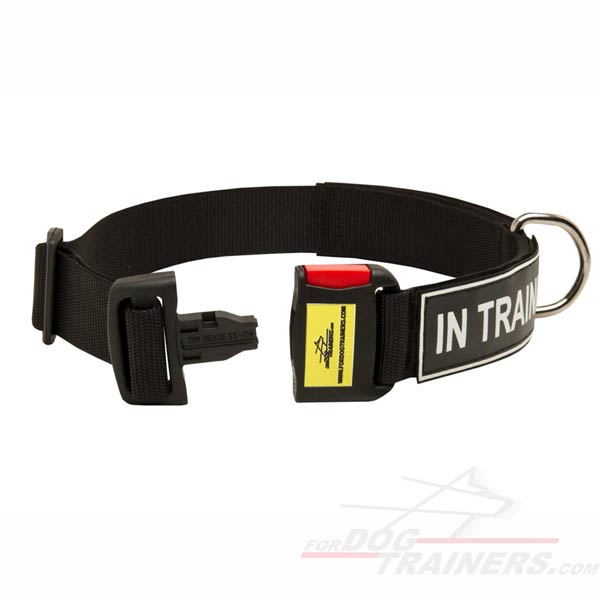 Nylon Dog Collar with patches