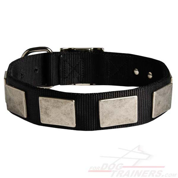 Reliable Nylon Dog Collar with Massive Plates