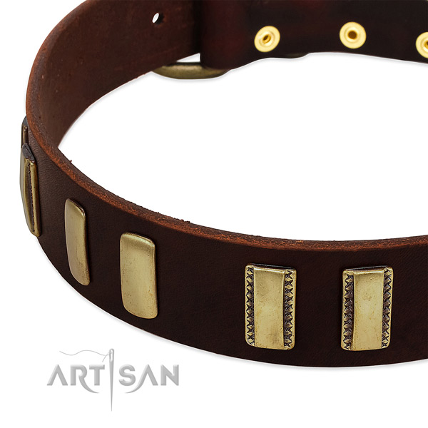 Leather Dog Collar Decorated with Old Bronze-Like Plates