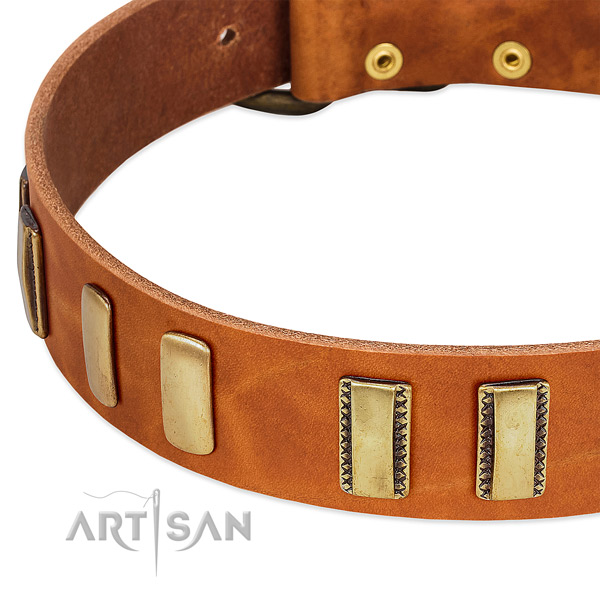 Rust Resistant Old Bronze-like Plated Fittings on Tan Leather Dog Collar