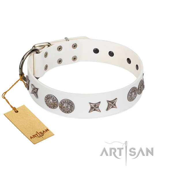 Decorated black leather dog collar for everyday activities