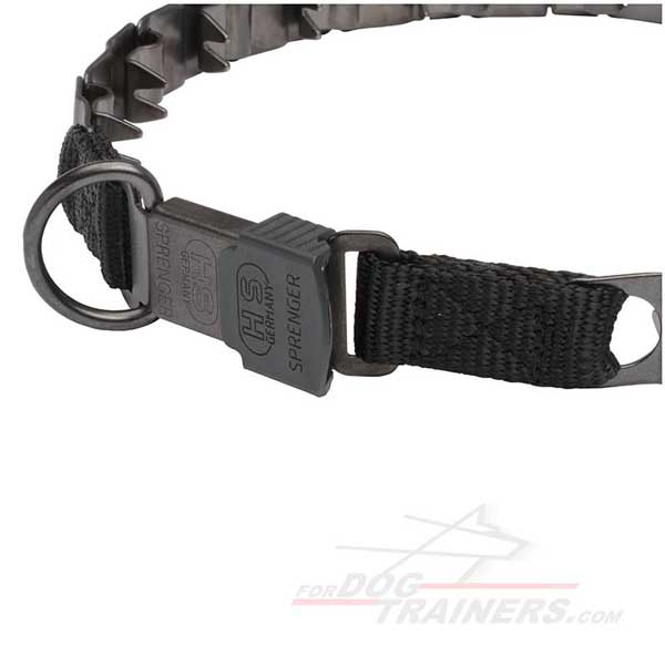 Dog pinch collar with D-ring
