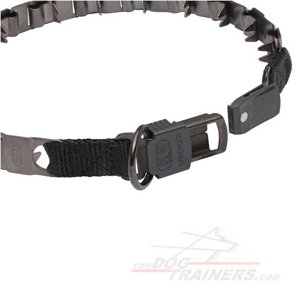 Dog pinch collar with D-ring for leash attachment