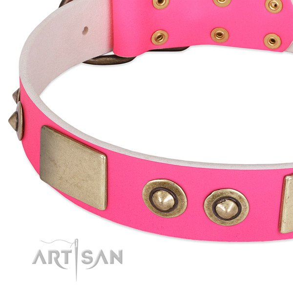 Leather Dog Collar with Stunning Design