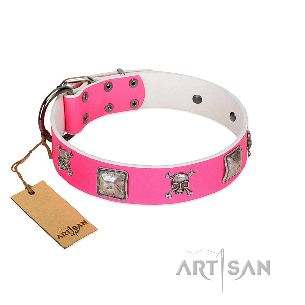 Elegant FDT Artisan leather dog collar