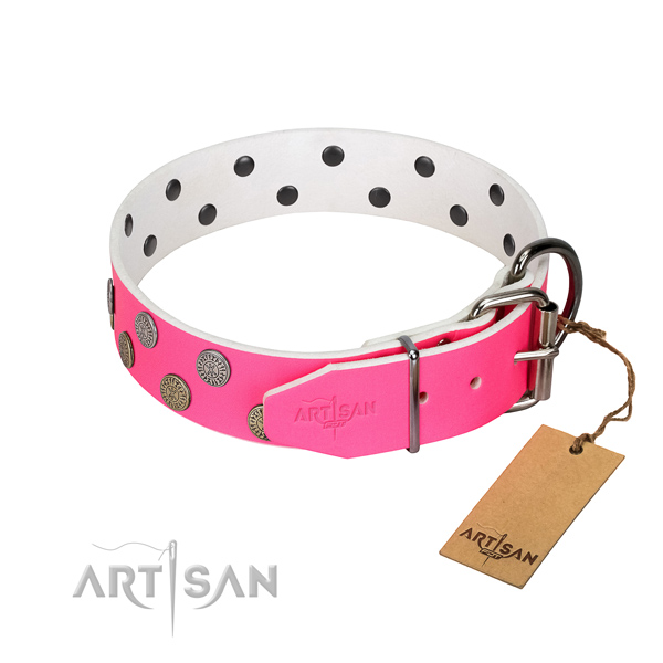 Studded leather dog collar with silver-like plated fittings