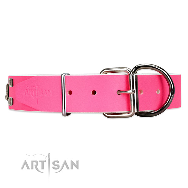 Stylish leather dog collar with silver-like buckle