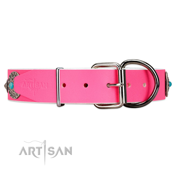 Elegant dog collar with chrome-plated hardware