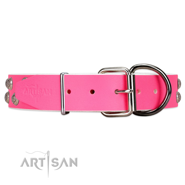 Modern leather dog collar with silver-like hardware
