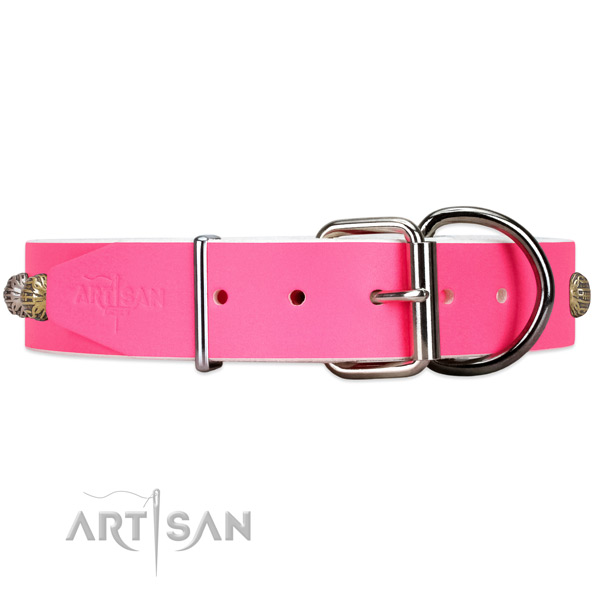 Leather dog collar with silver-like hardware