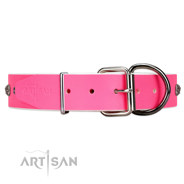 Leather dog collar with silve-like hardware