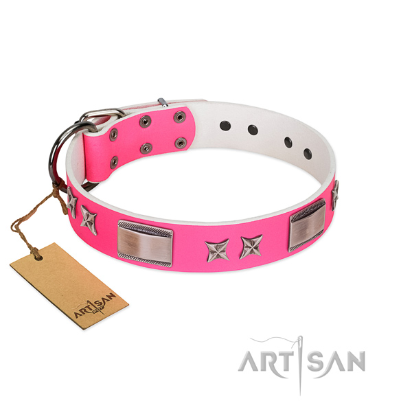 Walking genuine leather dog collar with stars and plates