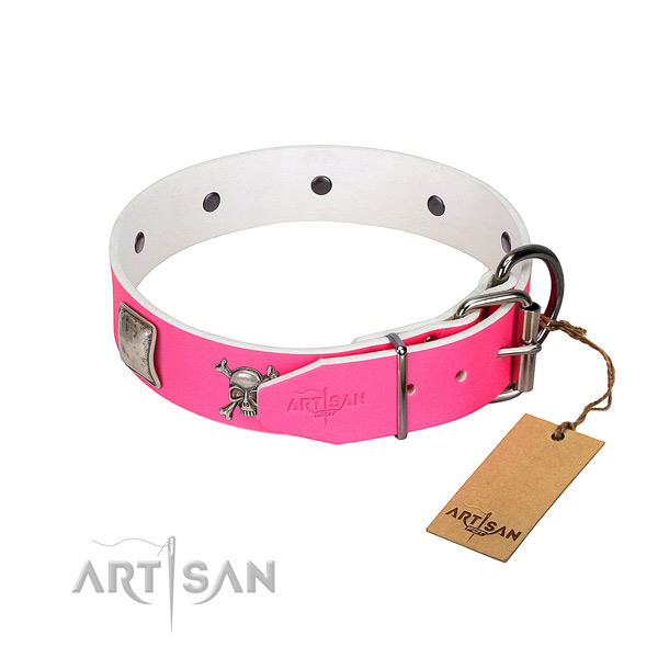 Comfortable leather dog collar with with polished edges