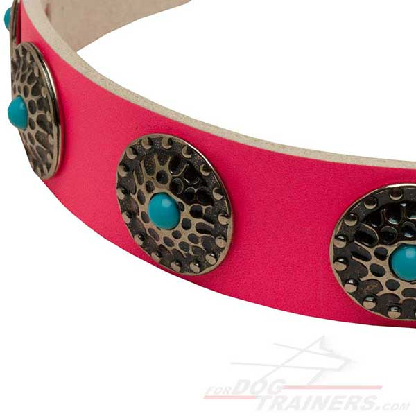Beautiful Circles with Blue Stones on Comfortable Leather Cane Corso Collar