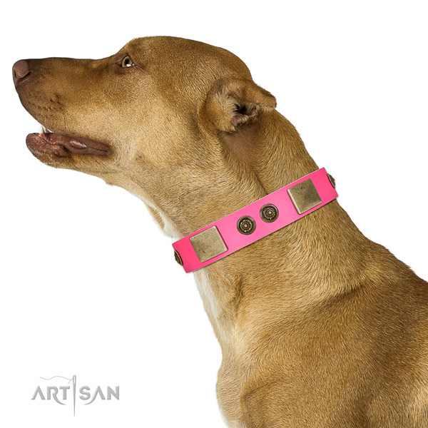 Pink Leather Pitbull Collar for Perfect Look
