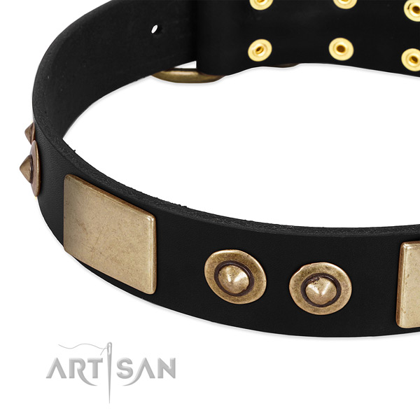 Royal quality black leather dog collar with plates and
