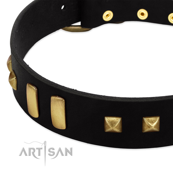 Black Dog Collar with Old-bronze Plated Decorations