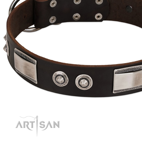 Brown dog collar with large plates and spiked studs