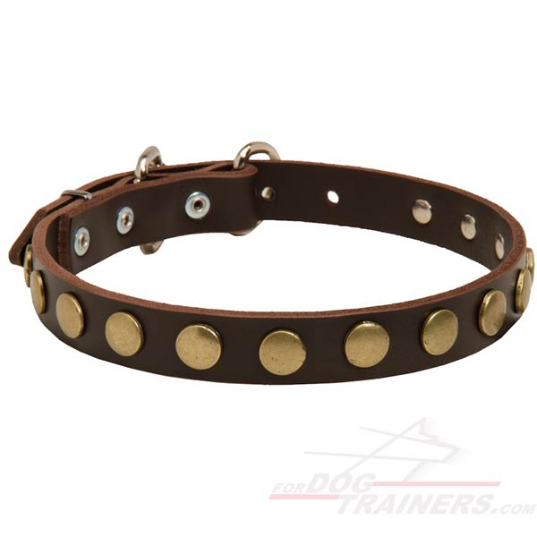 Leather Collar with circles