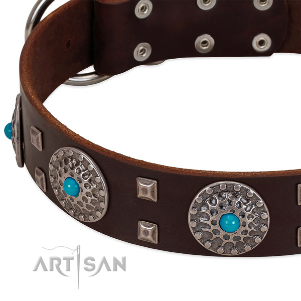 Elegant leather dog collar with luxurious decorations
