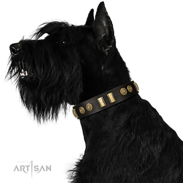 Reisenschnauzer daily walking dog collar of extraordinary quality leather