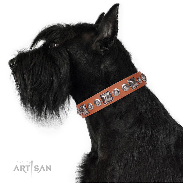 Reisenschnauzer easy adjustable full grain natural leather dog collar with embellishments