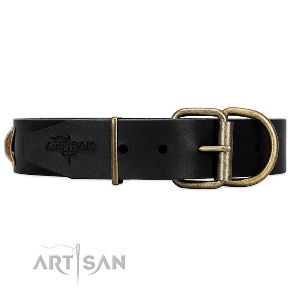 Black Dog Collar with Rust-proof Hardware for Daily Control
