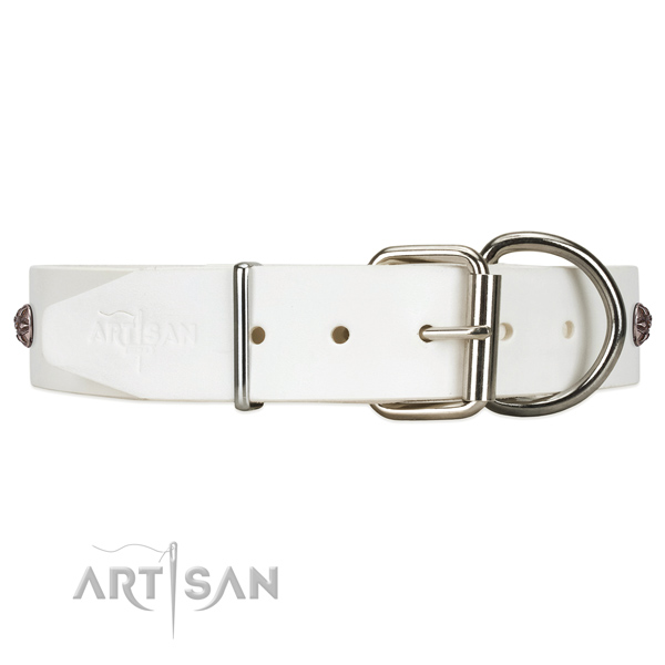 Reliable leather dog collar with easy-to-fix closure