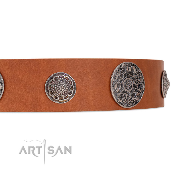 Tan leather dog collar with riveted ornate brooches