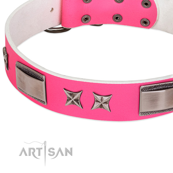 Fashionable leather dog collar with chrome-plated