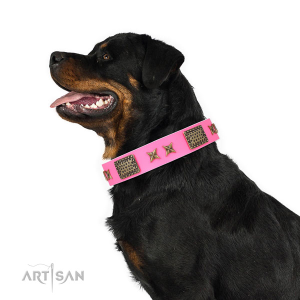 Rottweiler daily use dog collar of top notch quality leather