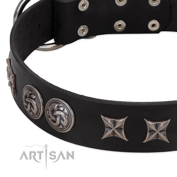 Modern black leather dog collar with cool decorations