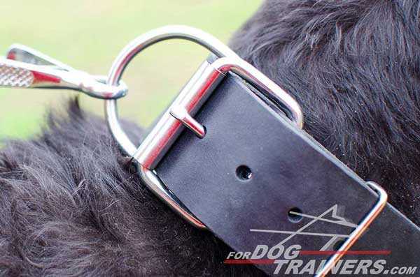 Super Strong Leather Dog Collar with Nickel-plated Buckle