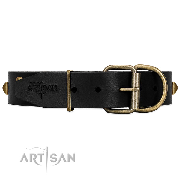 Reliable Hardware on Black Leather Dog Collar