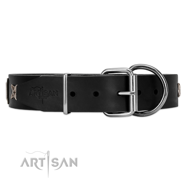 Black leather dog collar with durable fittings