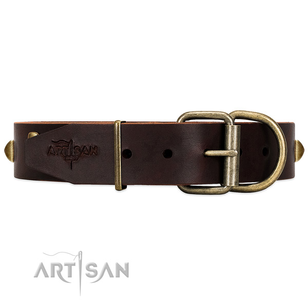 Reliable Hardware on Brown Leather Dog Collar