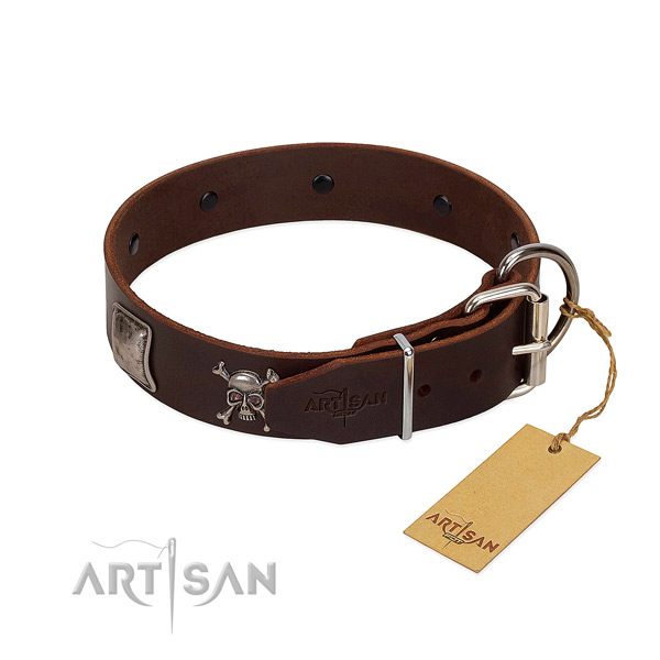 Designer Dog Collar is Safe to Wear