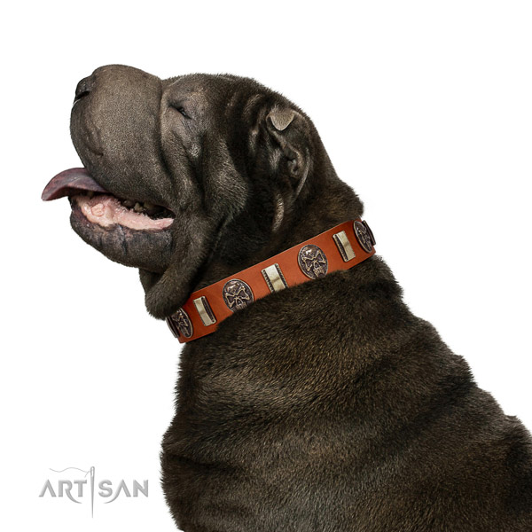 Walking Leather Shar Pei Collar with Rust-proof Embellishments