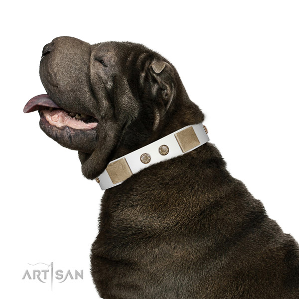 Soft Leather Dog Collar for Daily Use