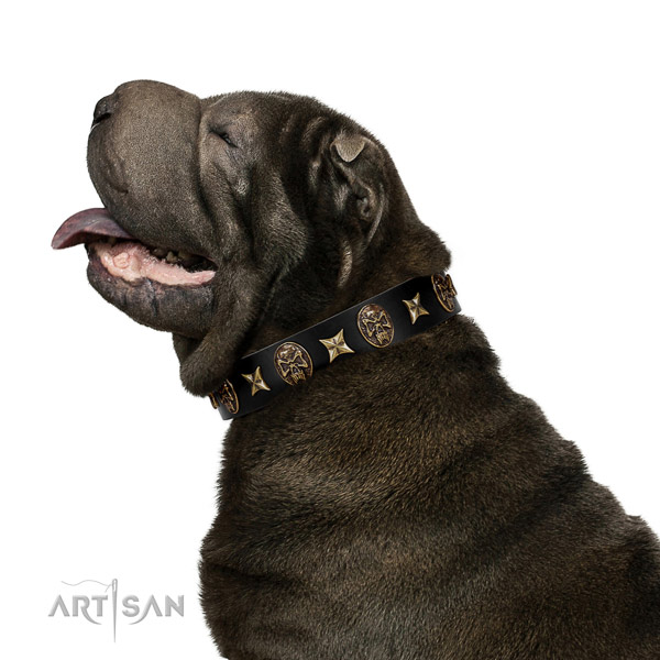 Comfortable leather Shar Pei collar for walking