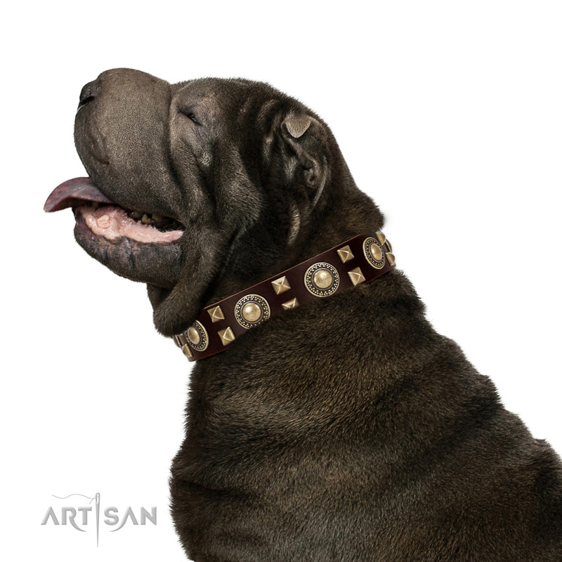 Handcrafted walking leather Shar Pei collar