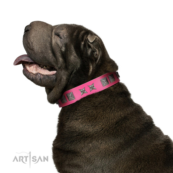 Extraordinary walking pink leather Shar Pei collar with