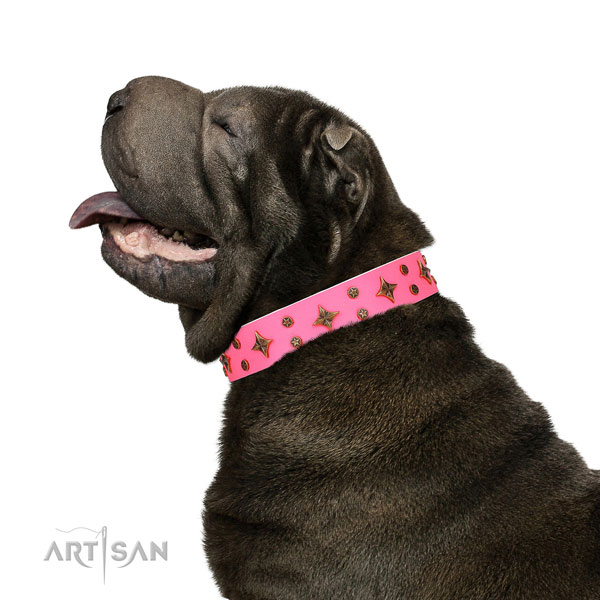 Shar Pei decorated full grain leather dog collar with embellishments