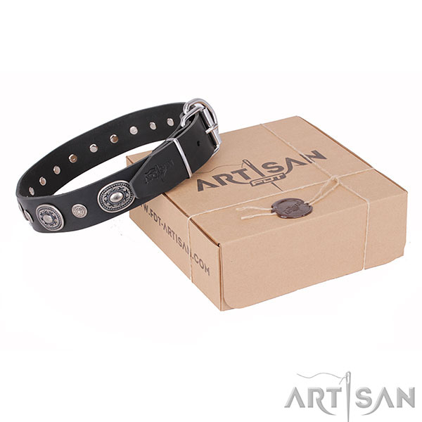 Designer Leather Dog Collar with Rustproof Adornment
