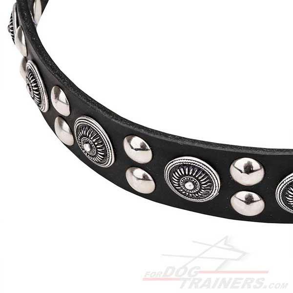 Silver-like Fittings on Leather Dog Collar