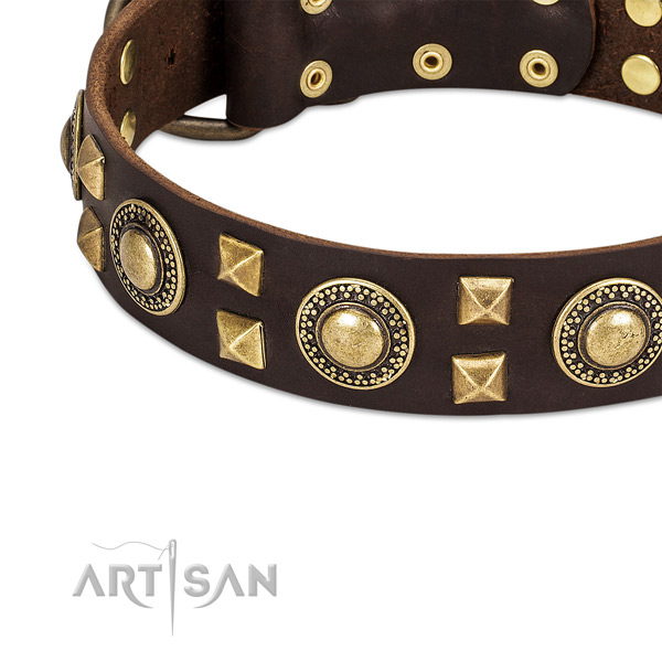 Modern leather dog collar with cool decorations