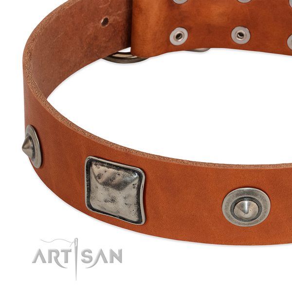 Natural leather dog collar with vintage decorations