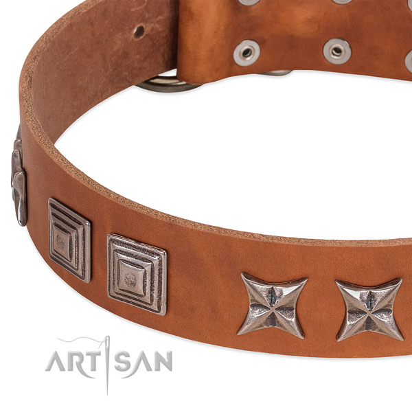 Tan leather dog collar with antique decorations