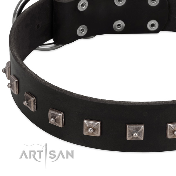 Black leather dog collar with posh decorations